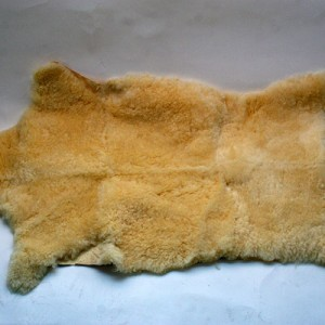 Piel ovina antiescaras